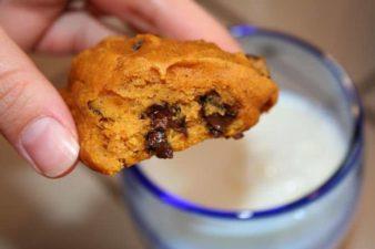 The Best Oatmeal Pumpkin Cookie Recipe