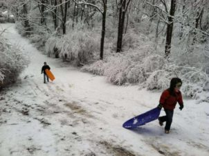 The Best Places for Sledding in and around Louisville