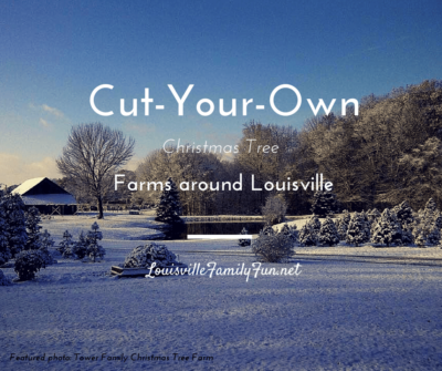 Christmas tree farms Louisville Kentucky - Christmas Tree Farms: Where To Cut Your Own Christmas Tree