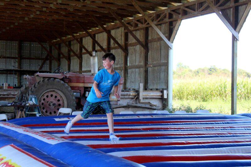 thomas dairy farm and market