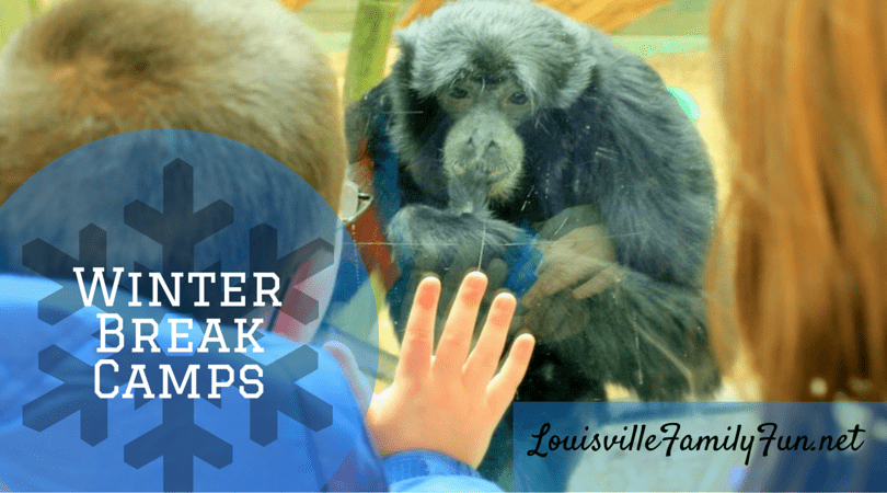 Winter Break Camps for Kids Louisville