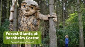 Forest Giants at Bernheim Forest
