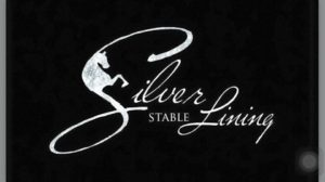 Silver Lining Stables Overnight Spring Break Camp
