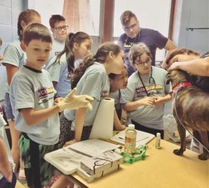 Club SciKidz Summer Camps