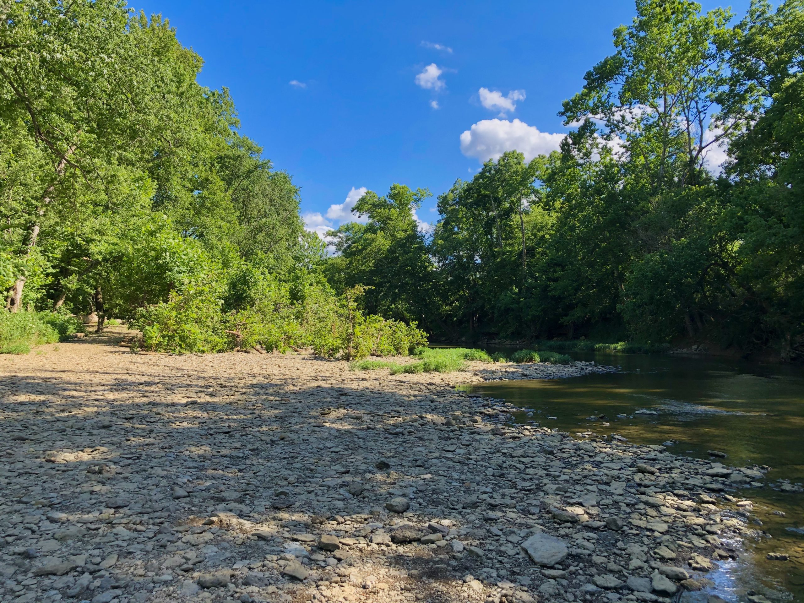 Hiking with kids Louisville