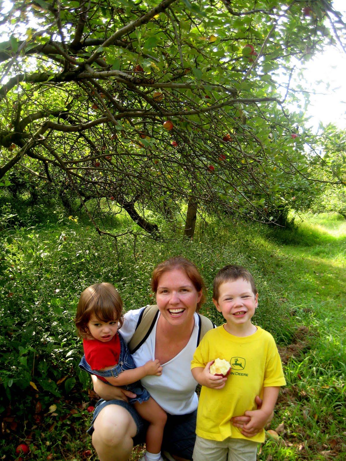 apple picking near Louisville