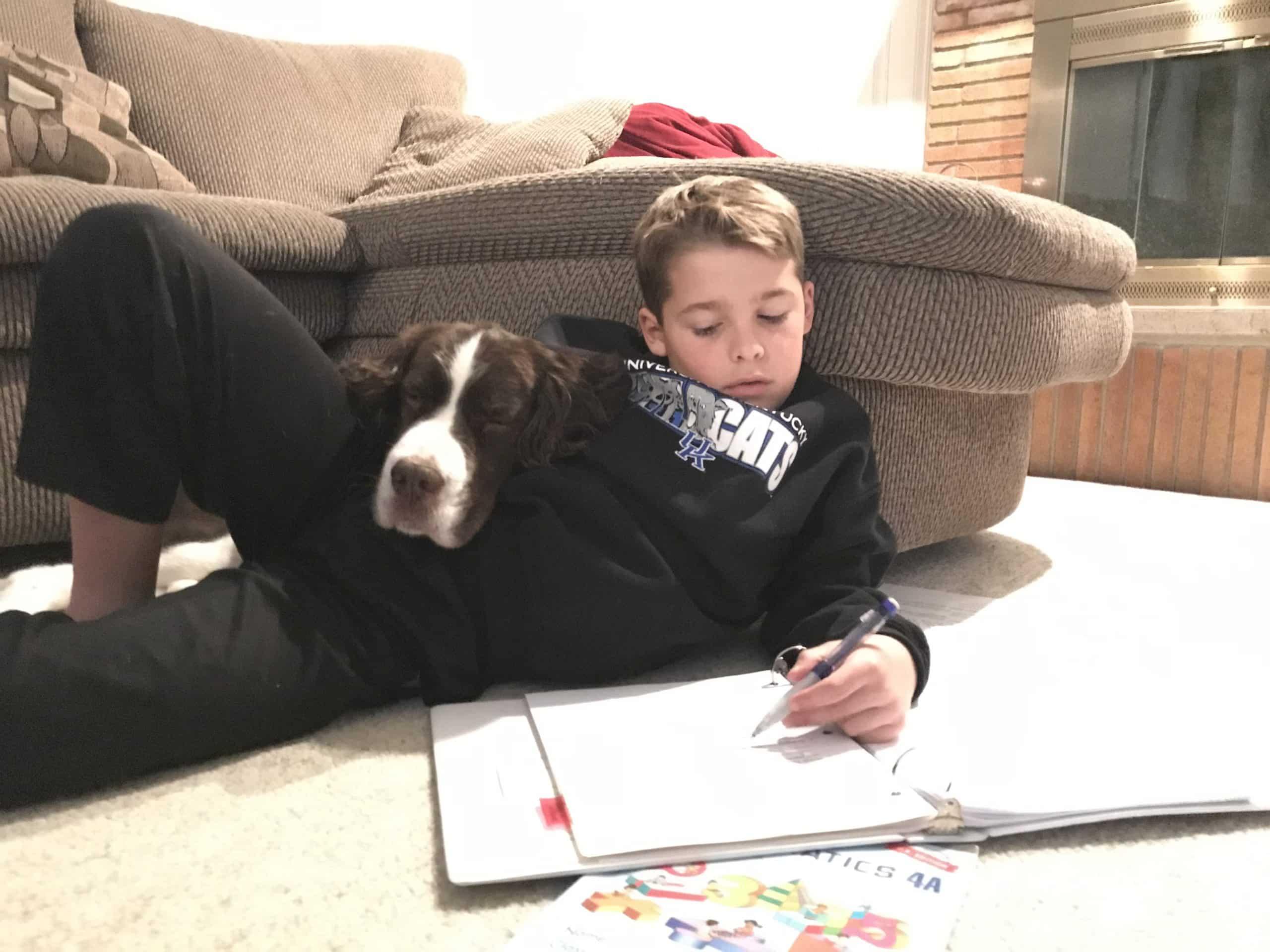 how to homeschool in Louisville