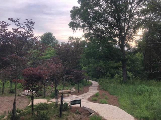 Moss Gibbs Woodland Garden