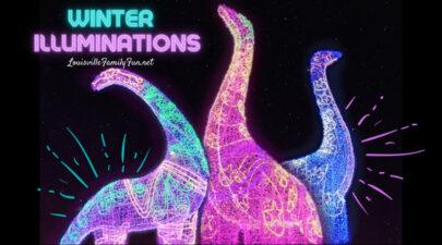 winter illuminations light show