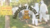 HoneyBear Farms